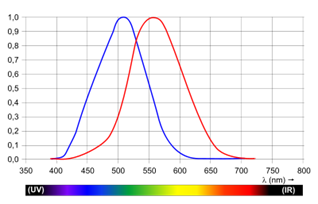 Light sensitivity curve of the human eye: blue = scotopic view (at night), red = photopic view (daytime)