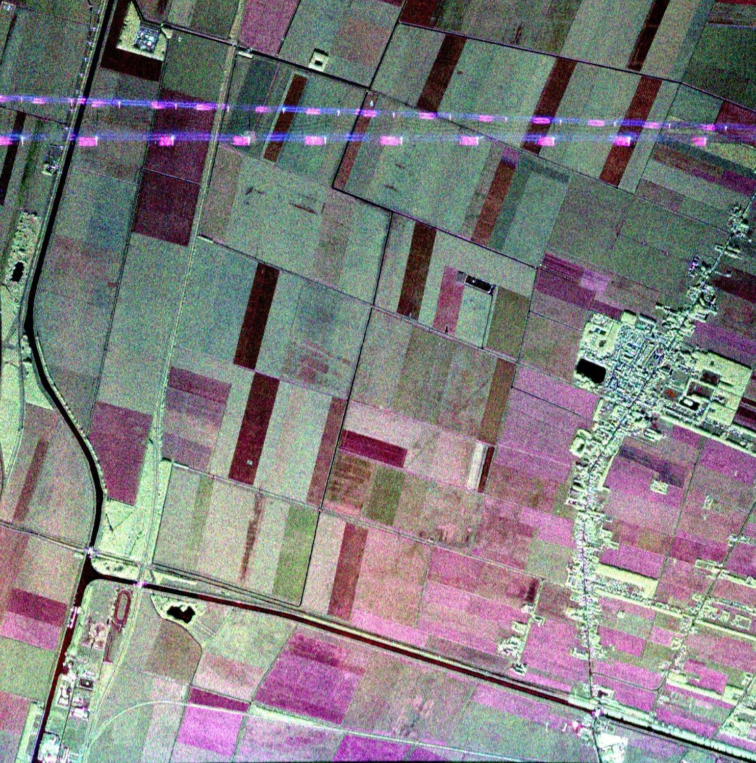 Noord-Oost Polder - verschillende gewassen